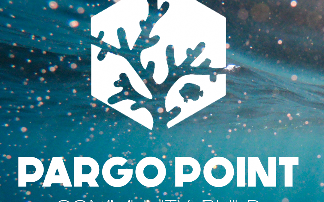 Community Build Event: Pargo Point